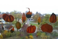 Herbstdekoration (2/2)