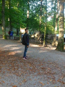 Wandertag 2015 (4/25)
