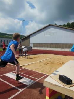 Jugend trainiert für Olympia (14/33)